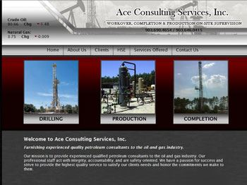 web design for Ace Consulting Services, Inc.